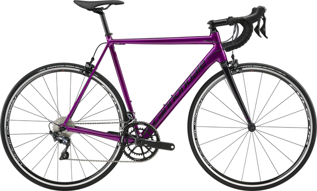 cad12 ut purple